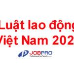 Luật lao động Việt Nam 2020 mới nhất